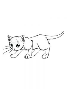 Little Kitten Coloring Pages