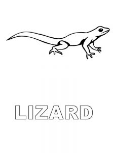 Lizards Printable Coloring Pages Free