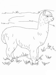 Llama Coloring Pages Fortnite