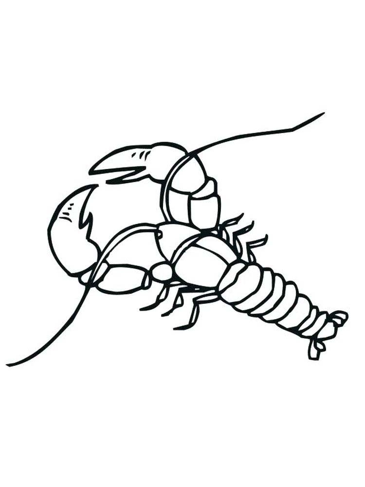 Lobster coloring pages Picture