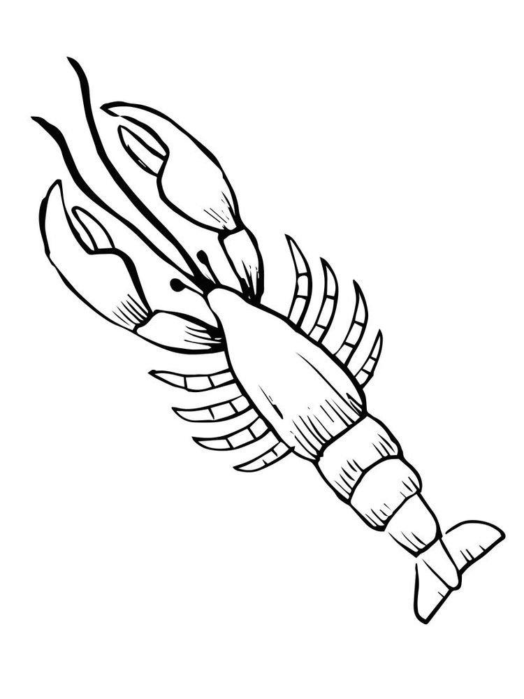 Lobster coloring pages Printable