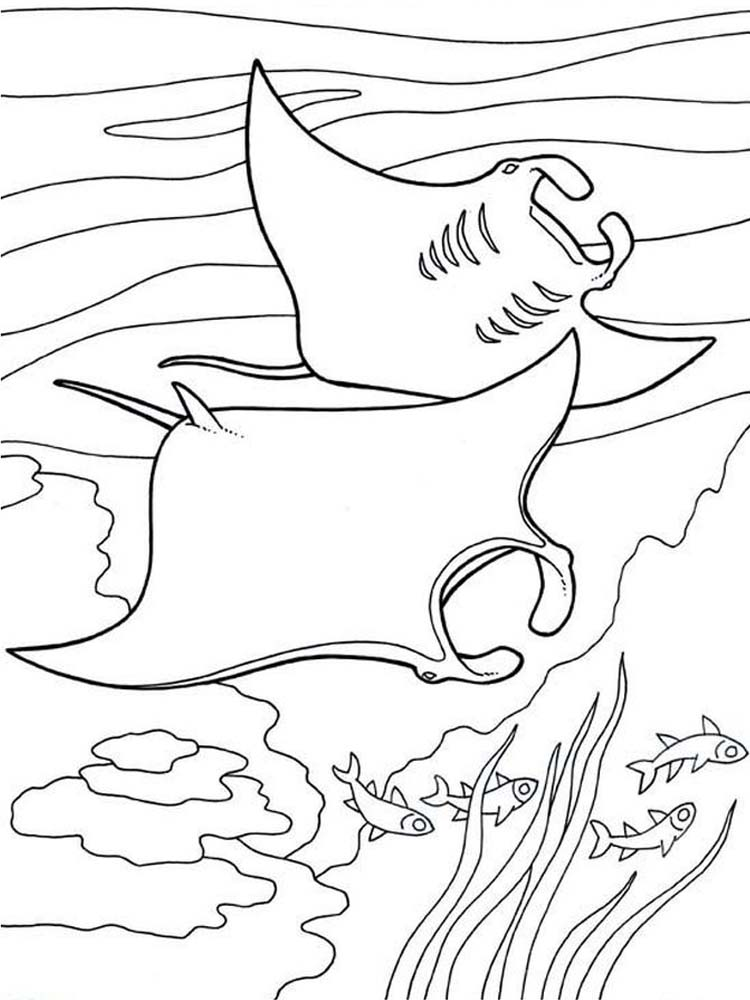Manta Ray Coloring Pages