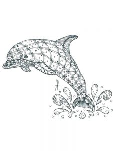 Mermaid Dolphin Coloring Pages