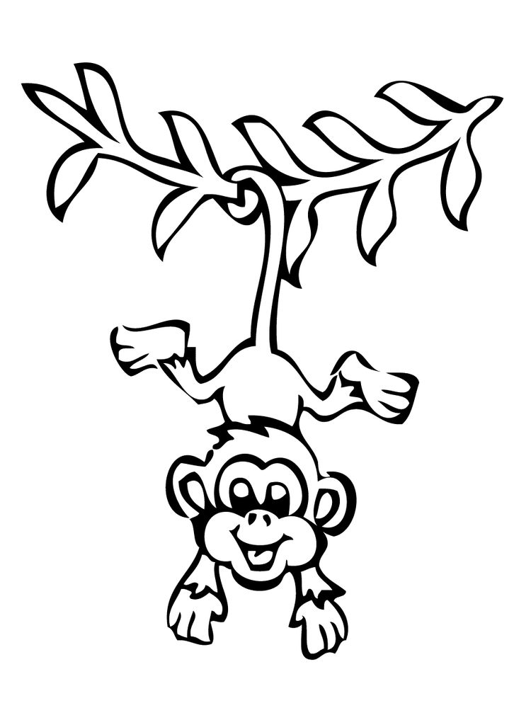 Monkey Coloring Pages For Preschoolers