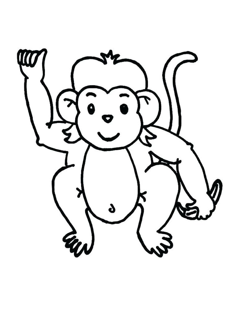 Monkey Colouring Pages To Print
