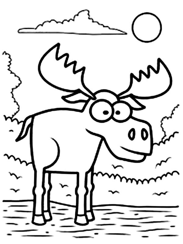 Moose Coloring Pages To Color And Print
