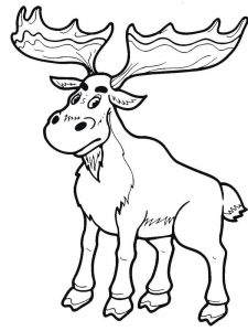 Moose On The Loose Coloring Pages