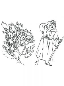 Moses And The Burning Bush In The Quran