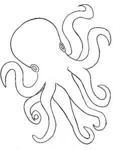 Octopus Coloring Pages Free