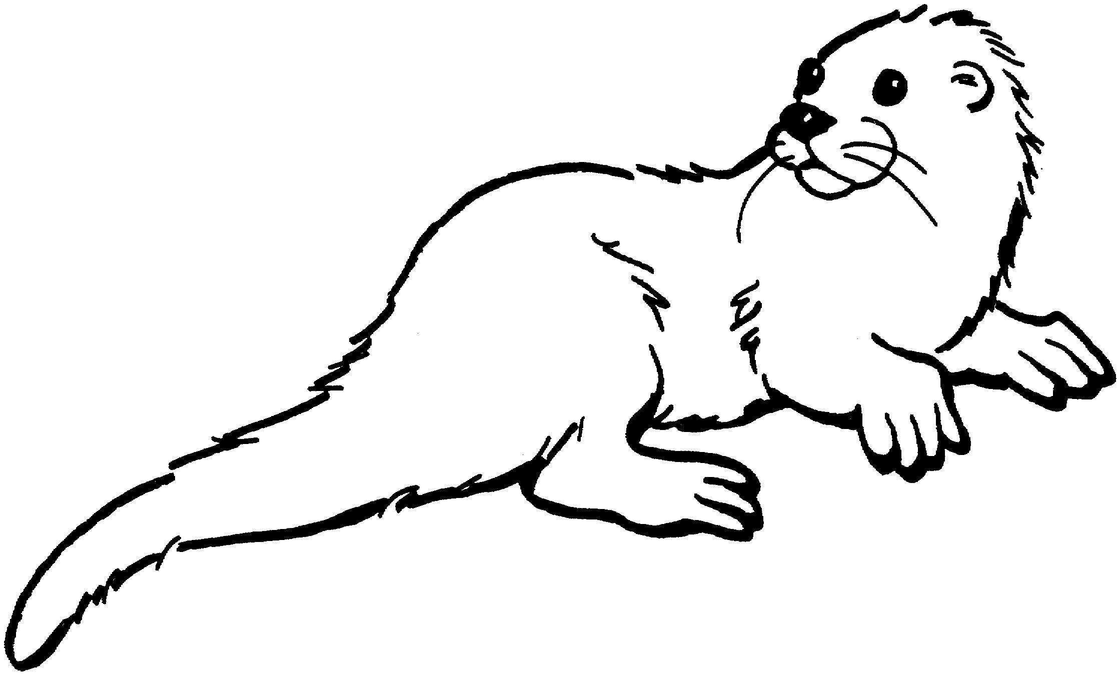 Otter Coloring Sheet