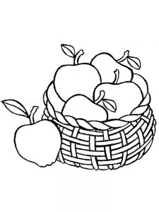 Parts Of An Apple Coloring Page