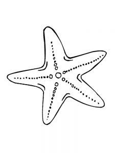 Patrick Starfish Coloring Pages