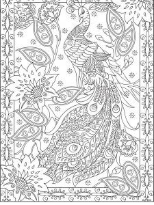 Peacock Coloring Pages Colored