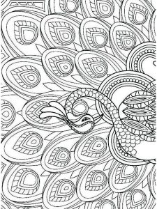 Peacock Coloring Pages Finished