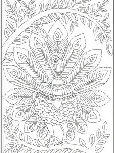 Peacock Coloring Pages Online