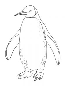 Penguins Hockey Coloring Pages