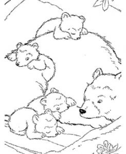 Polar Bear Coloring Pages For Toddler