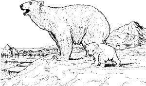 Polar Bear Mother and Baby Coloring Pages