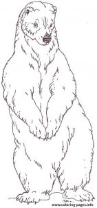 Polar Bear Standing Coloring Pages Printable