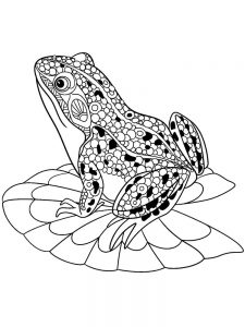 Princess And Frog Coloring Pages