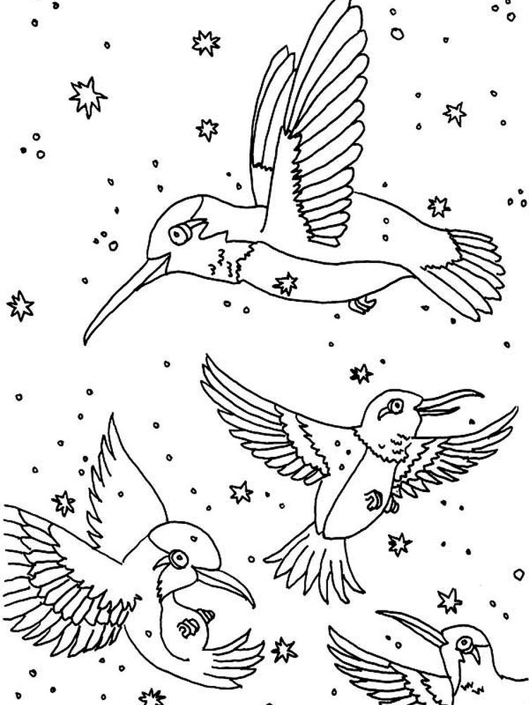 Printable Coloring Pages Of Hummingbirds