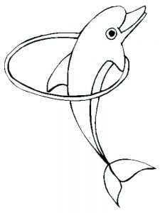 Printable Dolphin Coloring Pages For Adults