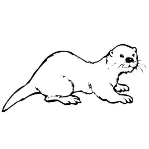 Printable Otter Colouring Page