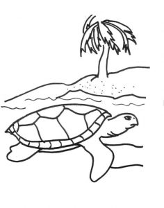Printable Sea Turtle Picture