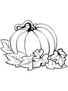 Pumpkin Coloring Pages Pdf