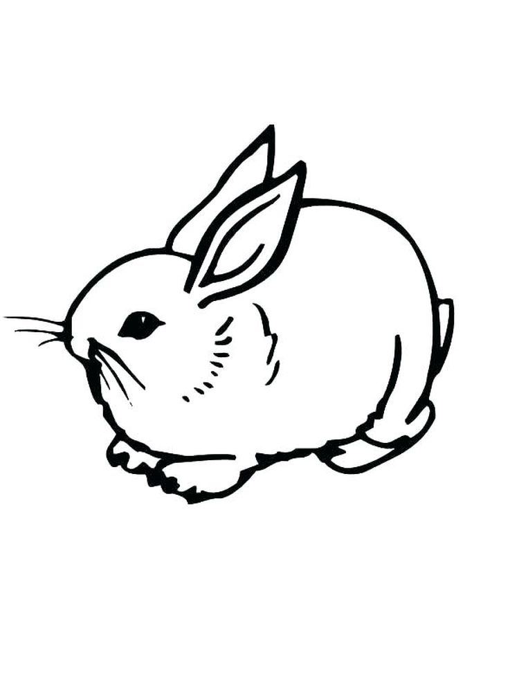 Rabbit Coloring Pages For Preschoolers