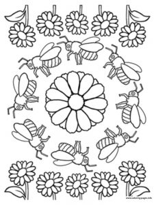 Rainforest Insects Coloring Pages