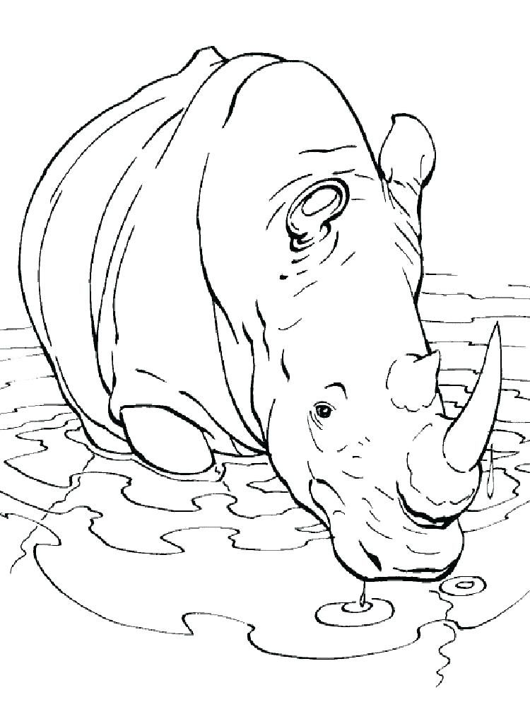 Rhino Coloring Page Images