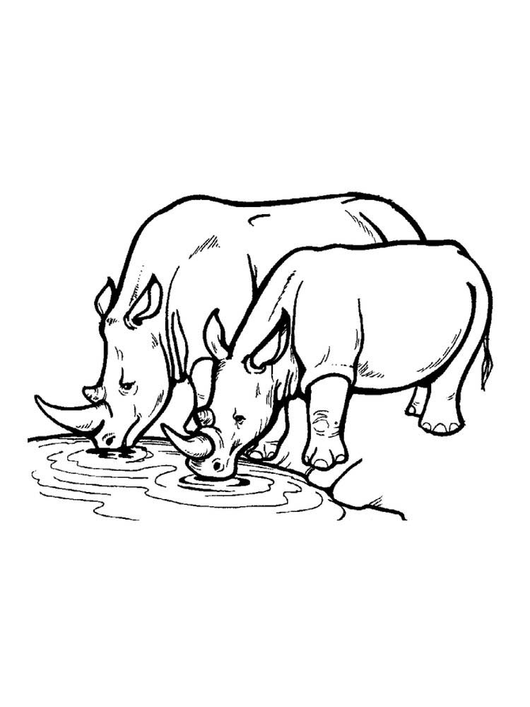 Rhinoceros Coloring Pages Pdf