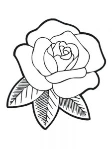 Rose Coloring Pages Flowers