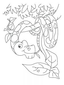Sea Snake Coloring Page