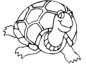 Sea Turtle Coloring Page for Toddler