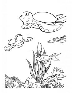 Sea Turtle Images to color