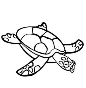 Sea Turtle Is Boring Coloring Page