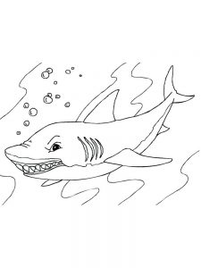 Shark Coloring Book Pages