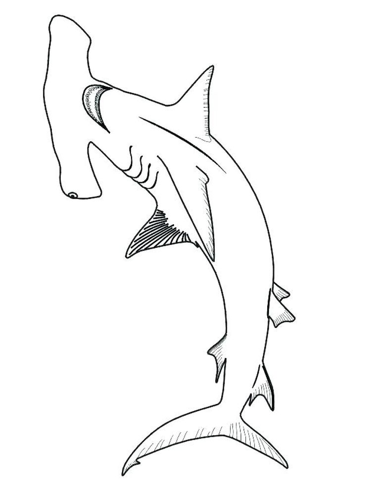 Sharkboy And Lavagirl Coloring Pages