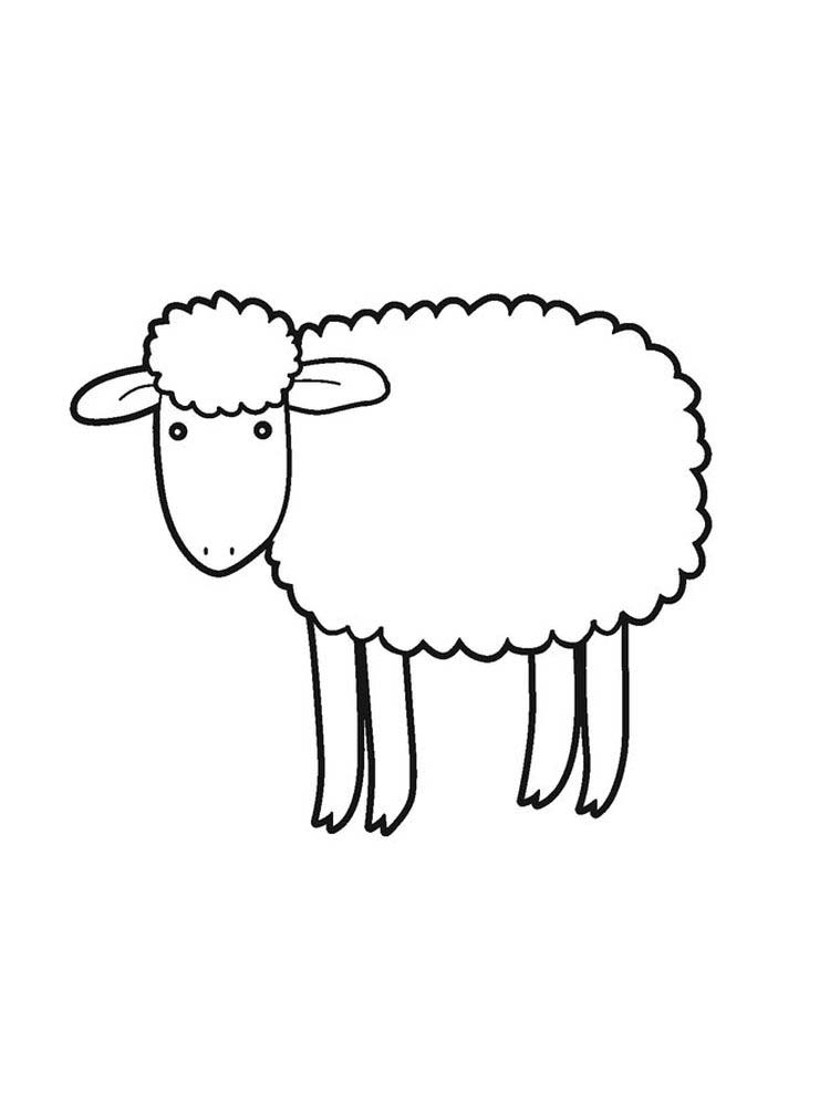 Sheep And Goat Coloring Pages