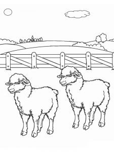 Sheep Coloring Pages Easy