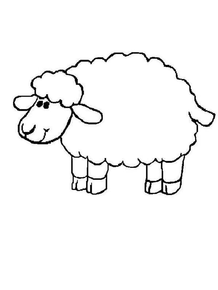 Sheep Coloring Pages For Toddlers
