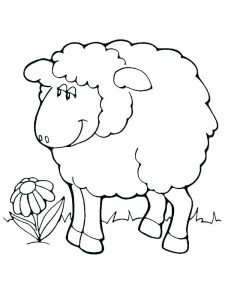 Sheep Coloring Pages Pdf