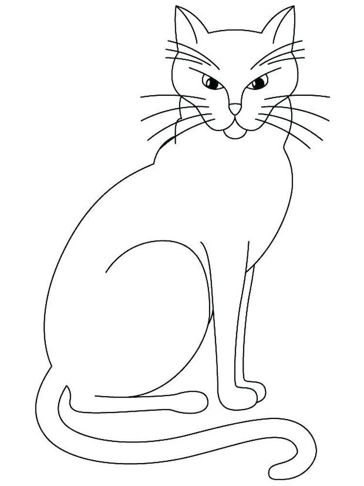 Siamese Kitten Coloring Pages