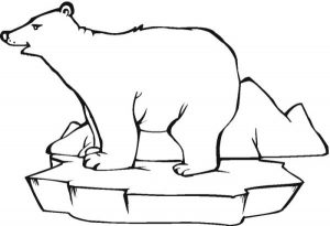 Simple polar bear coloring pages