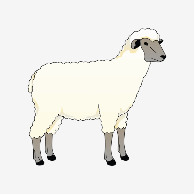 Small Sheep Coloring Pages