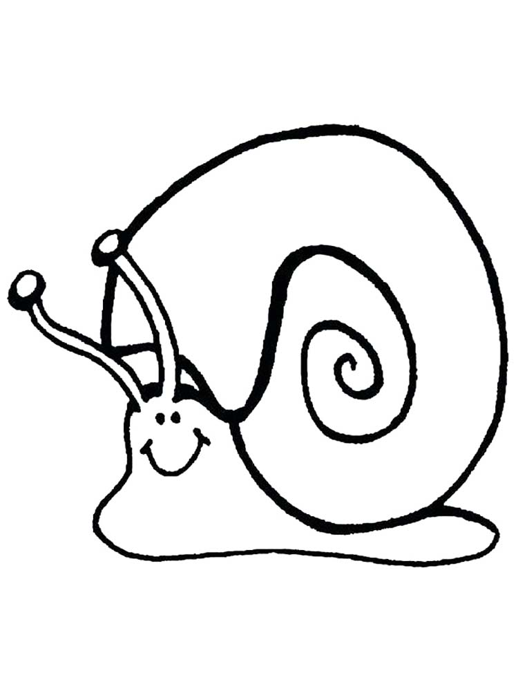 Snail Body Coloring Page