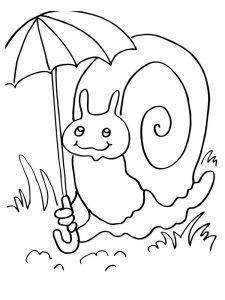 Snail Coloring Pages Preschool