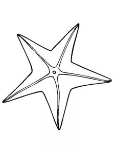 Starfish Coloring Pages To Print